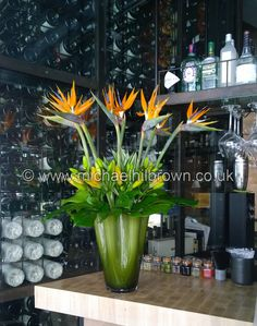 Constructed this Strelitzia Flower Arrangement for a Central London Restauant while freelancing at One Aldwych Hotel