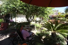 The gardens of Mission Terrace are the perfect place to catch up on your reading!