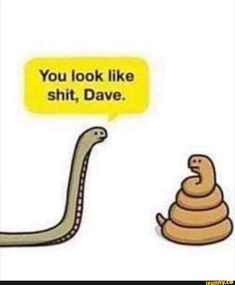You look like shit, Dave. Funny Puns, Funny Games, Funny Quotes, Hilarious, Funny Shit, Funny Stuff, Poop Jokes, Dad Jokes, Animal Puns