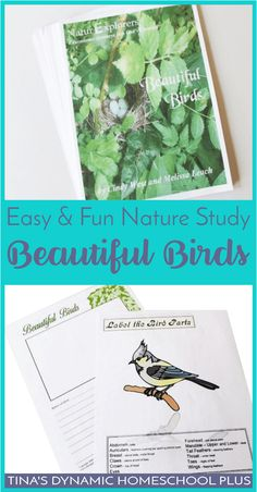 Easy and Fun Nature Study: Beautiful Birds Unit Study Map Activities, Color Activities, Hands On Activities, Science Lessons, Science Resources, Science Ideas, Activities For Autistic Children, Classical Education, Nature Journal