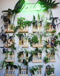 Interior Livingroom Curtains - Interior Styling Quotes - Home Interior Plants - Dark Interior Windows - Deco Nature, Nature Decor, Room With Plants, Wall Of Plants, Hanging Plants, Interior Plants, Interior Design, Diy Planters, Plant Decor