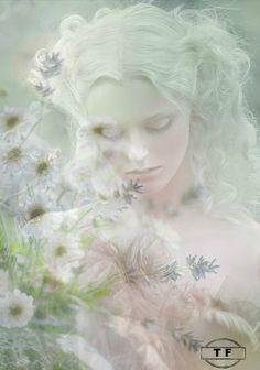 Softly Whispering Soul