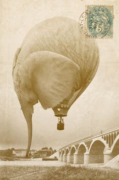 How Do You Hide An Elephant? 8 - Contests - interesting but unlikely ! Balloon Illustration, Elephant Illustration, Air Balloon Rides, Hot Air Balloon, Photomontage, Surreal Art, Illustrations, Photo Manipulation, Fantasy Art