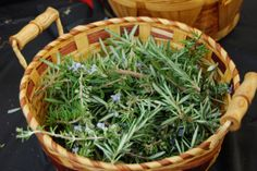 Rosemary is a great culinary herb in soups and sauces, but did you know that rosemary tea is an amazing healing remedy? http://livingawareness.com/diy-make-rosemary-tea/