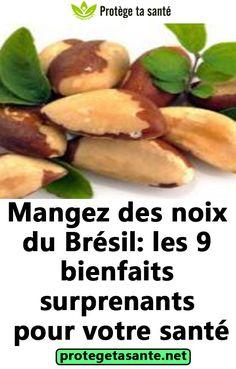 Mangez des noix du Brésil: les 9 bienfaits surprenants pour votre santé
