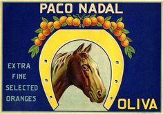 Spain Oliva Horse Orange Citrus Crate Label Art Print