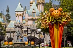 Buena Vista Street gets cleaned up as Halloween Time haunts Disneyland
