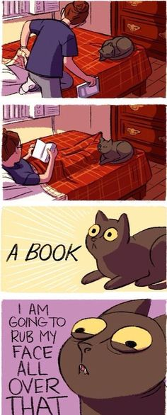 This is Izzy except she will come stand on the bookj and try to paw it closed. Very helpful when I was a student.