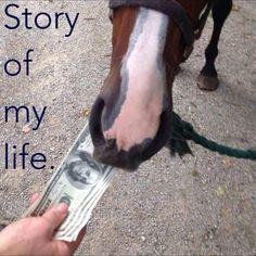 True Life. Equestrian Problems.