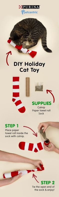 This year gift your kitty the purrrfect present: a DIY catnip sock toy. All you'll need is catnip, a sock and a paper towel roll. Place the roll in the sock, fill with catnip and tie the end. It's so easy and cute. now that's some cool cat stuff! Diy Cat Toys, Homemade Cat Toys, Toy Diy, Diy Pour Chien, Diy Jouet Pour Chat, Kitten Toys, Ideal Toys, Sock Toys, Animal Projects