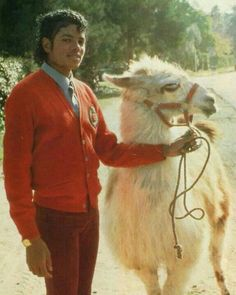 Michael Jackson and his lama Louie in front of his home in Encino Trey Taylor, Michael Jackson Bad Era, Wattpad, King Of Music, The Jacksons, My Idol, Camel, Photoshoot, History