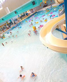 1000 images about tempe az fun best things to do in for Tempe swimming pool