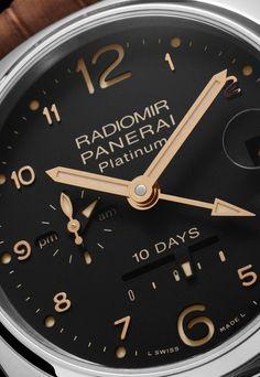 Panerai Radiomir GMT 10 Days Platino PAM 495 Dial Closeup