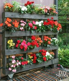 Gardening Flowers 43 Gorgeous DIY Pallet Garden Ideas to Upcycle Your Wooden Pallets - Need a cheap garden bed or planter that can be used either for vertical and horizontal gardening, but still looks good? Try these 43 pallet garden ideas. Palette Garden, Diy Shows, Garden Planters, Herbs Garden, Flower Planters, Easy Garden, Balcony Garden, Large Outdoor Planters, Potted Flowers