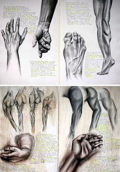 I like this figure drawing because of the massive amount of detail put into the hand and the foot at the top. I will aim to put this in my drawing.