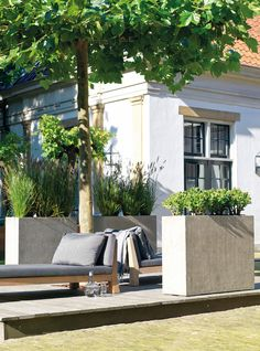 division planter supplied by koberg. Outdoor Sofa, Outdoor Furniture, Outdoor Decor, Sun Lounger, Bloom, Inspiration, Division, Design, Home Decor