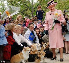 The Queen's Royal Dogs: Happy Queen Elizabeth II and Corgis