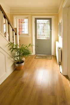 Small bright foyer featuring a hardwood flooring and a plant on the side for a refreshing look. Hallway Decorating, Entryway Decor, Foyer, Decorating Ideas, Hall Flooring, Vinyl Flooring, Flooring Store, Yellow Hallway, Home Interior
