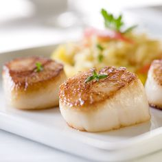 "Baked Scallops ""Delicious baked scallops with butter and garlic. Bay scallops are the little ones and they tend to be sweeter tasting than sea scallops. Sauteed Scallops, Baked Scallops, Pan Seared Scallops, Sea Scallops, Fresh Scallops, Grilled Scallops, Cooking Scallops, Fish Recipes, Seafood Recipes"