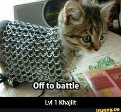 Khajiit is ready for adventure.