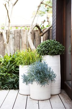 Giant outdoor planters to improve the look of your homes exterior. White large planters for curb appeal and backyard decor. Dream Garden, Home And Garden, Modern Planters, White Planters, Patio Planters, Tall Planters, Ceramic Planters, Tall White Planter, Modern Gardens