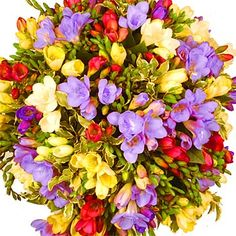 freesia bouquet colourful and fragrant