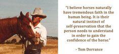 Tom Dorrance More Than a Horseman Cowboy Quotes, Horse Sayings, Therapeutic Horseback Riding, Horse Training Tips, Horse Tips, Inspirational Horse Quotes, Show Jumping Horses, Horse Riding Quotes, Horse Barns