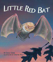 Bat Books for Kids - Fantastic Fun & Learning