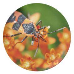 #Hidden in plain sight melamine plate - #flower gifts floral flowers diy