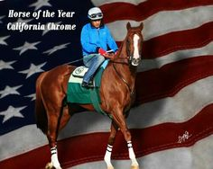 California Chrome Horse Of The Year