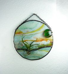 Stained Glass Panel Air Plant