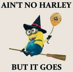 Lol how funny minion dressed up as a witch and has a witch broom. Aint no harley but it goes Minion Meme, Cute Minions, My Minion, Minions Quotes, Evil Minions, Funny Shit, The Funny, Hilarious, Funny Stuff