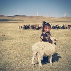 Mary had a little lamb...Mongolia