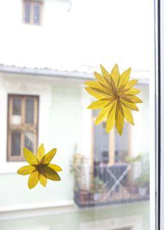Window decorations / Decoración de las ventanas / Fensterschmuck