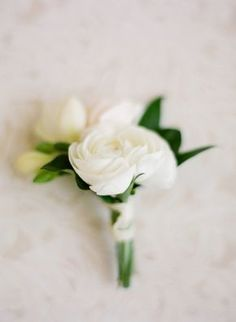 simple white and green classic boutonnière | Photography: Jose Villa Photography - josevillablog.com  Read More: http://www.stylemepretty.com/2014/09/04/classic-glam-west-hollywood-wedding/
