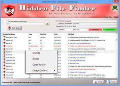 Hidden File Finder - Scan & Discover all Hidden Files on Windows