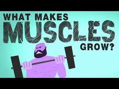 What makes muscles grow? - Jeffrey Siegel | TED-Ed
