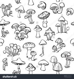 Find Vector Seamless Pattern Mushroom Toadstools stock images in HD and millions of other royalty-free stock photos, illustrations and vectors in the Shutterstock collection. Mushroom Drawing, Mushroom Art, Art Drawings Sketches, Tattoo Drawings, Mushroom Tattoos, Doodle Art Journals, Tattoo Flash Art, Bullet Journal Art, Funky Art