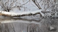 Check out this Cold River Season HD Stock Footage Clip. Static shot made at day. Winter Scenery, Best Stocks, Winter Beauty, Hd Video, Stock Footage, Shots, Cold, River, Seasons