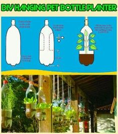 Fai da te Fioriere bottiglia di plastica #diy #petbottle #gardening #recycling #upcycling #planter per offerta gimpel