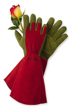 Rose Gloves for Pruning and Gardening | Gardeners.com