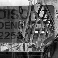 Polaroides Polaroide Polaróides #mobgraphia #mobigrafia  #rio450 #mobilidade #urbano #street #geometria #grafismo #onibus #bus by baltar