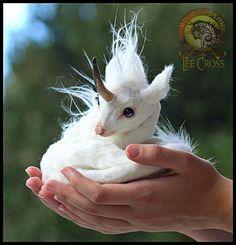 Woodsplitterlee Handmade Poseable Baby Unicorn