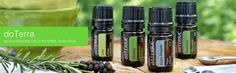 More doTERRA Essential Oil Recipes. Remember not all Essential Oils have the quality needed to be used in food but doTERRA does! Doterra Wellness Advocate, Cooking With Essential Oils, Lime Cream, Doterra Recipes, Pure Oils, Disaster Preparedness, Oil Uses, Doterra Essential Oils, Doterra Shop