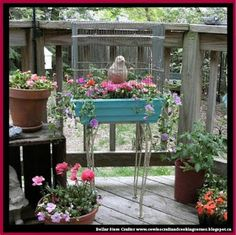 Dollar Store Crafter: Turn A Birdcage Into A Cute Planter