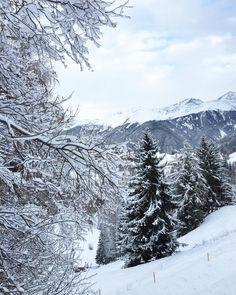 Noch ein aller aller letztes winterliches Bild für euch bevor ich hier wieder zu den üblichen Kaffee- und Blumenfotos übergehe  Es kann dann jetzt auch gerne wärmer werden draussen. Ich hatte genug Winter in 2015/16  #snow #winterwonderland #winter #Austria #travelling #serfaus