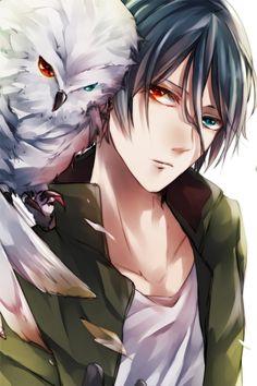Random Anime Guy? A guy who has 2 different eye color with an owl who also  has 2 different eye color