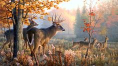 deer group family art wallpaper download free hd size
