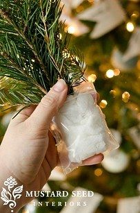 Decorating with tree clippings is an easy way to make everything festive, but use this little trick to make them last longer. | 51 Life-Saving Holiday Hacks That Are Borderline Genius