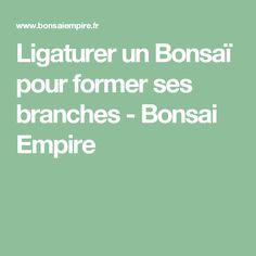 Ligaturer un Bonsaï pour former ses branches - Bonsai Empire